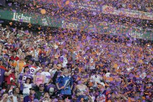Fan, Zuschauer- und Mitgliederwachstum